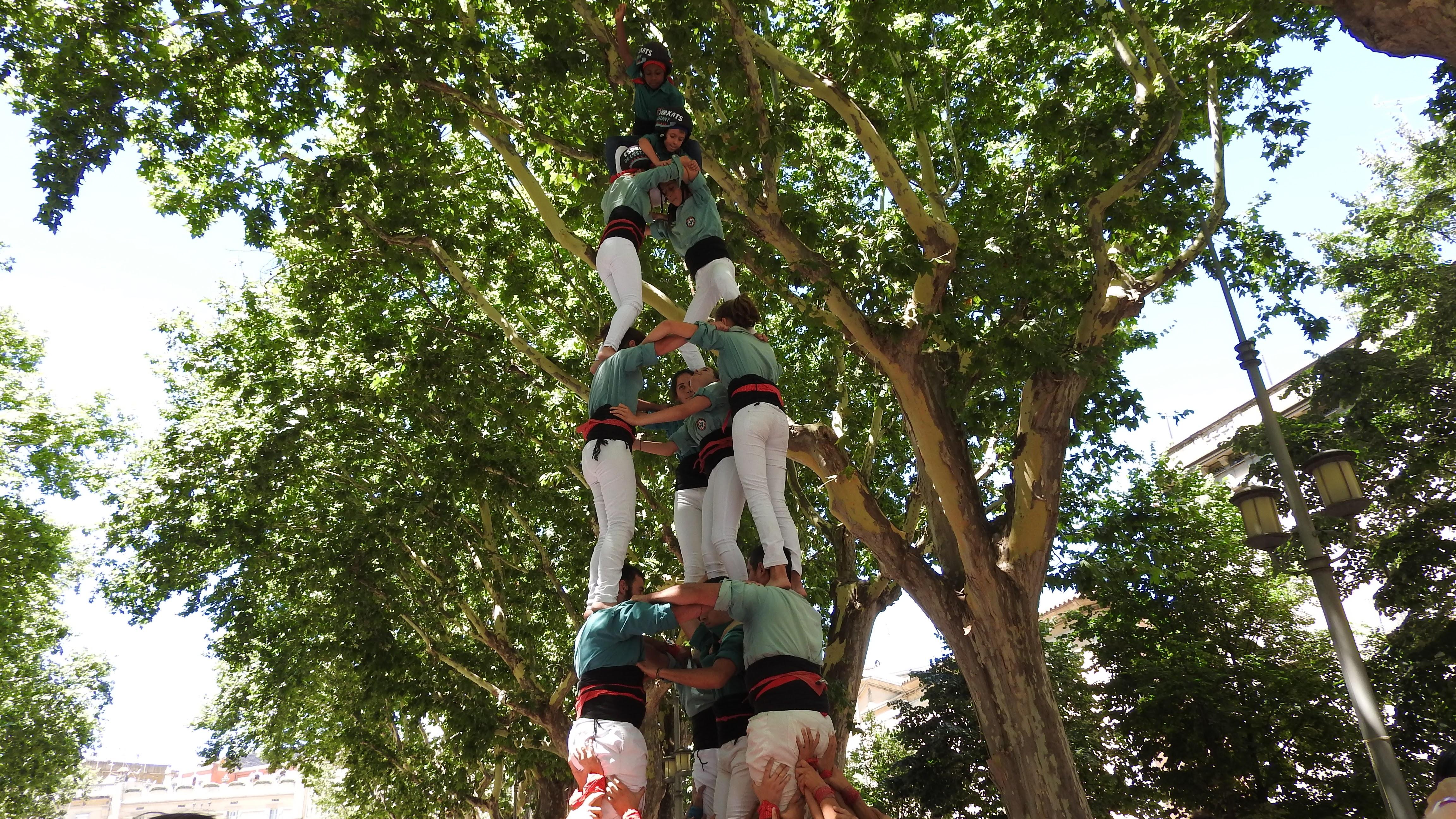 LA CRÒNICA - Sant Pere a Figueres